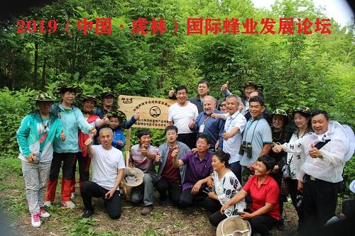 042.黑龙江・虎林市森蜜蜂业农民专业合作社